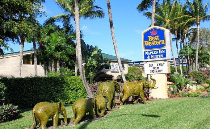 Airport Shuttle to and from Naples Best Western Plaza Hotel in and near Florida